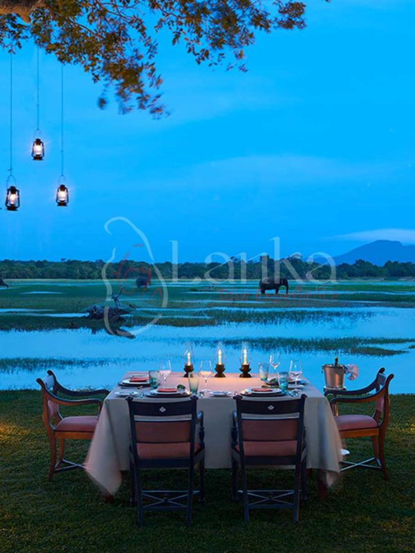 Sri Lanka's Forgotten Corners | Sri Lanka Travel Guide | LankaTourExperience