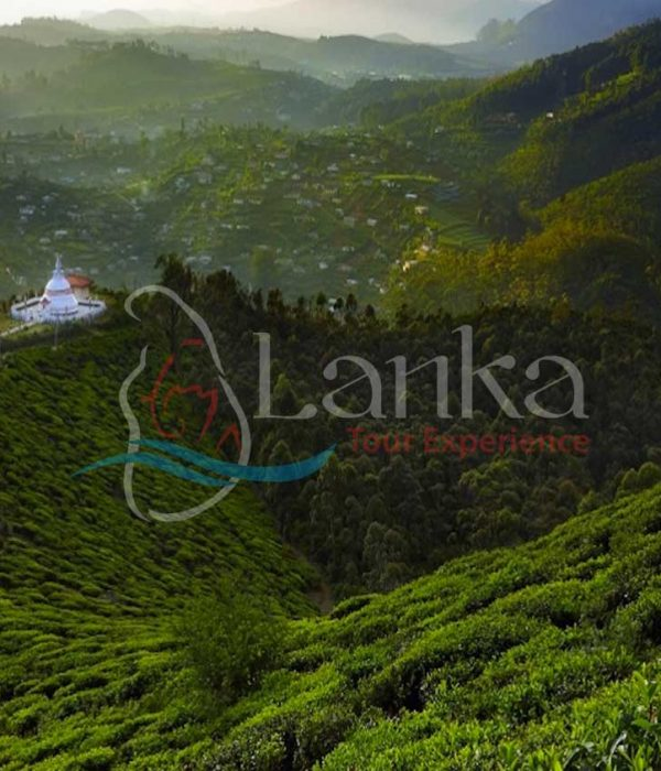 Classic Island Tour | Sri Lanka Travel Guide | LankaTourExperience